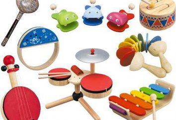 Kindermusikinstrument – musikalisches Spielzeug für Kinder
