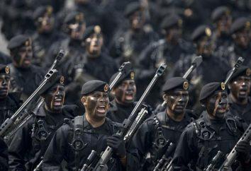 Les troupes d'élite de la Russie: les noms, la liste et le classement. Comment se rendre aux troupes d'élite russes?