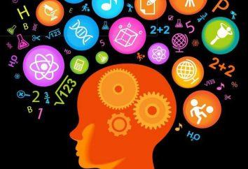 Jak poprawić pamięć? Badając pamięć, jego technik. Ćwiczenia pamięci i uwagi