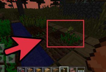 """Jak zrobić """"Maynkraft"""" Portal do wioski, czyli budowę"""