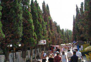 Sudak, viale di cipressi – un posto per un piacevole soggiorno