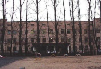 Ospedale dei bambini Santa Olga città. San Olga – patrono del numero ospedale pediatrico 4 a San Pietroburgo
