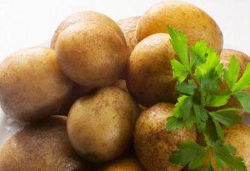 Une recette simple pour les pommes de terre dans multivarka