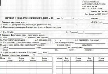 Pomoc 2 PIT: gdzie uzyskać opis dokumentu