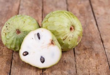 Czy kiedykolwiek widziałeś te rzadkie egzotyczne owoce?