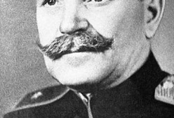 Vasiliy Zaharovich Korzh: biographie de Héros de l'Union soviétique