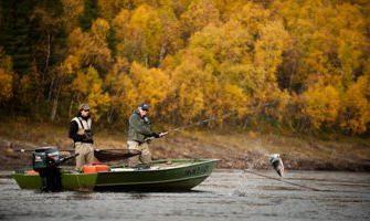 Pesca em novembro. Comentários da pesca no Volga, o Don e Kuban