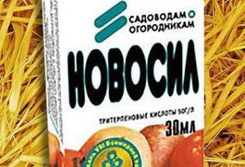 """Biopreparat """"Novosil"""": istruzioni per l'uso, l'efficacia e recensioni"""