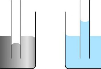 Qual è il fenomeno dei capillari e come si spiegano?