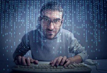 Praktykant programista edukacja, zwłaszcza pracy obowiązki