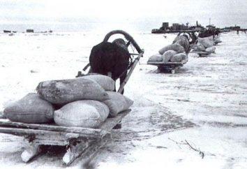 Qual è la strada della vita in Blockaded Leningrado?