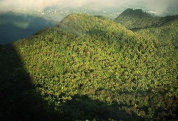 potencial de recursos naturais e sua importância para a economia mundial