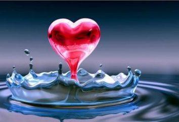 Compatibilità Acquario e Acquario nel matrimonio: c'è qualche possibilità di un idillio?