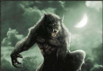Film sui lupi non più su predatori, ma il lupo mannaro