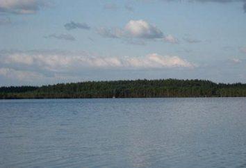 Stiamo andando a riposare sulla regione di Leningrado Blue Lake
