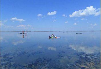 lago de sal – lugar terapêutico Altai Krai: Guseletovo