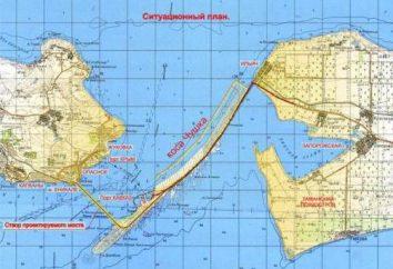 Chi sta per costruire un ponte sullo stretto di Kerch? Costruzione di ponti. Il ponte sullo stretto di Kerch