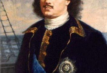 Portret Petera 1. Nikitin, Portret Peter 1. Historyczne Portret Piotra 1