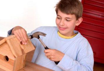 Jak zbudować birdhouse – wymiary, rysunek, zdjęcie