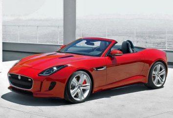 Jaguar F-Type: testuj nowe elementy