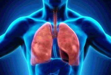 Système respiratoire: la structure des organes. Plèvre – est … la lumière de la cavité pleurale