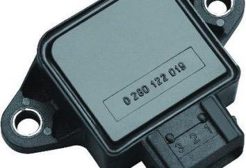 Acelerador Sensor Posição: típico, princípio de funcionamento
