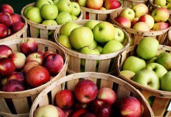 Wie ein Gebräu von Apfelsaft zu Hause machen