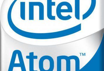 Rozwiązanie przetwarzanie N2600 linia ATOM: Intel poprawia produkty dla netbooków entry-level