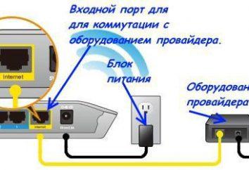 Jak podłączyć router D-Link DIR-300. Firmware, konfiguracja, testowanie
