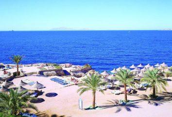 August in Ägypten: Bewertungen vor. August in Ägypten: Wetter, Feiertage