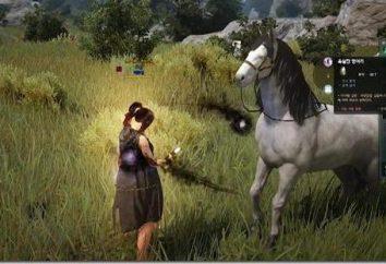 Deserto Nero: come prendere un cavallo? Andiamo top