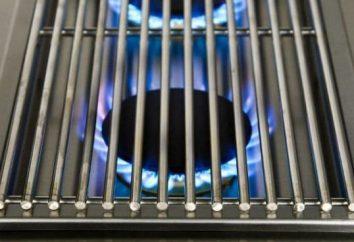 Besoin d'une table de cuisson intégrée? Modèle de gaz et ses avantages