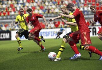 Laufen Sie nicht FIFA 14. FIFA 14 nicht auf die Einführung antworten