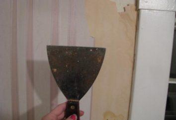 Comment enlever le vieux papier peint des murs: instruction