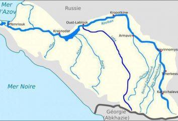 Kuban rivière: description. Istok, de la bouche, les plantes et les animaux