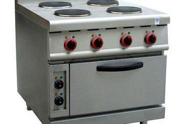 Bruciatore per stufe elettriche: le tipologie e le caratteristiche