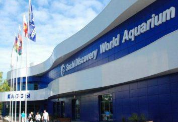 Największe akwarium w Rosji, opis, położenie i opinie