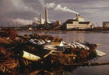 Los problemas ambientales: evidencia de la literatura