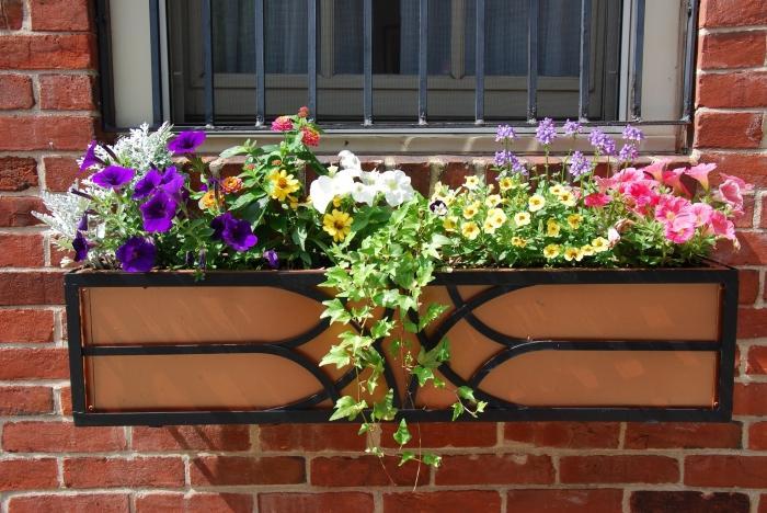 Blumenk sten auf dem balkon helle fassade dekoration for Dekorieren mit pflanzen
