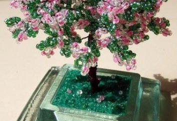 Master class pour les débutants: Apple Tree Perle