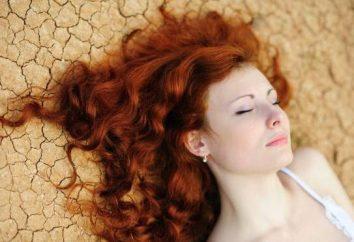 Henna iraniano: agente de coloração de cabelo, cofre