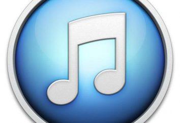 iTunes: análogos, descripción, características