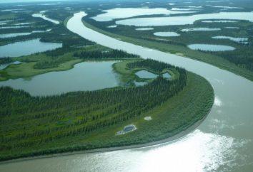 Mackenzie (rzeka). Opis, położenie geograficzne
