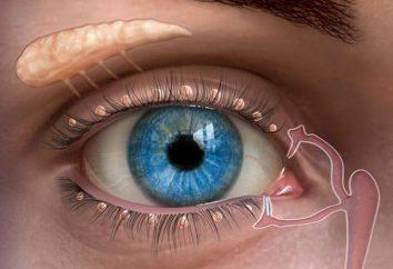 płyn łzowy – co to jest i co to jest?