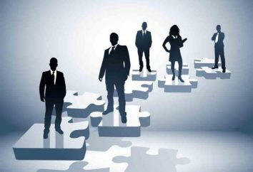 Decentramento – che cosa si tratta? Centralizzazione e decentramento
