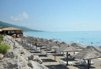 "Lazarevskoye Beach ""Dolphin"". Descripción y comentarios"