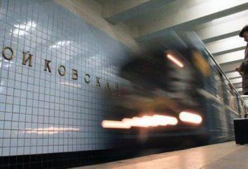 """""""Sliding Doors! Nächste Station – """"Voikovskaya'."""" Geschichte und Gegenwart der Moskauer Metro"""