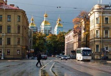 Dal deserto al quartiere culturale: Piazza del Teatro di San Pietroburgo