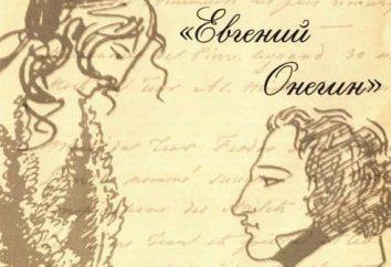 """immagine Lena nel romanzo """"Eugene Onegin"""". Sfortuna o destino?"""