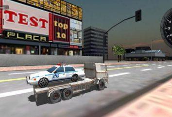 Simulationen Lastwagen: Truck Simulator 3D und Euro Truck Simulator 2